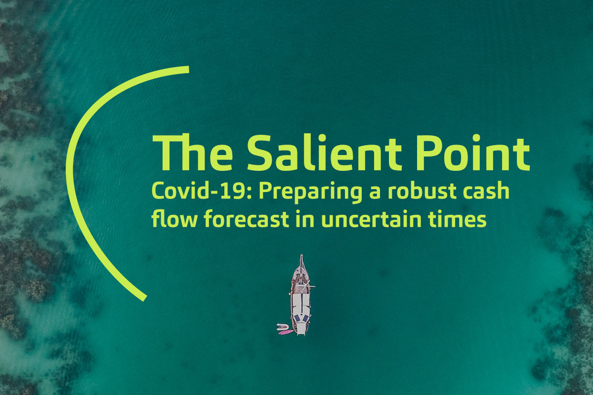 The Salient Point_Web_Issue 3_COVID-19 Cashflow
